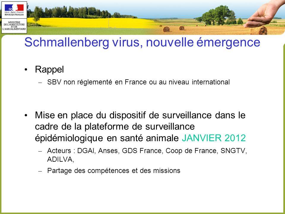 Schmallenberg virus, nouvelle émergence Rappel – SBV non réglementé en France ou au niveau international Mise en place du dispositif de surveillance d