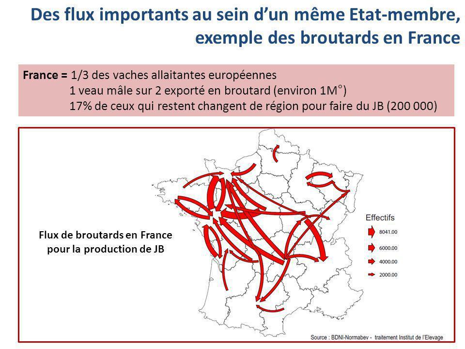 Des flux importants au sein dun même Etat-membre, exemple des broutards en France France = 1/3 des vaches allaitantes européennes 1 veau mâle sur 2 ex