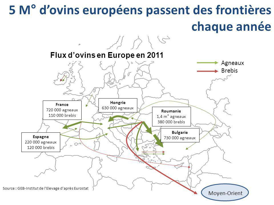 Espagne 220 000 agneaux 120 000 brebis France 720 000 agneaux 110 000 brebis Hongrie 630 000 agneaux Roumanie 1,4 m° agneaux 380 000 brebis Bulgarie 7