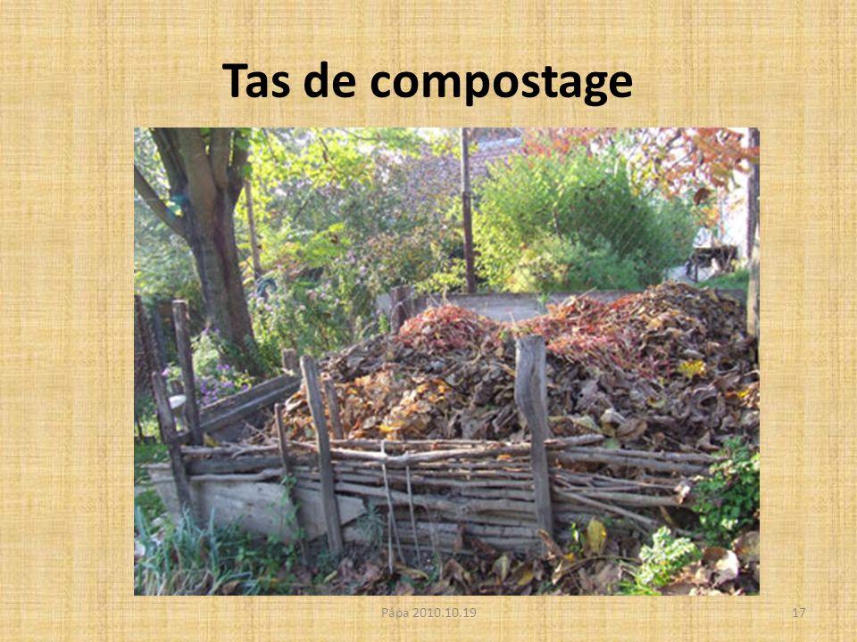 Tas de compostage Pápa 2010.10.1917