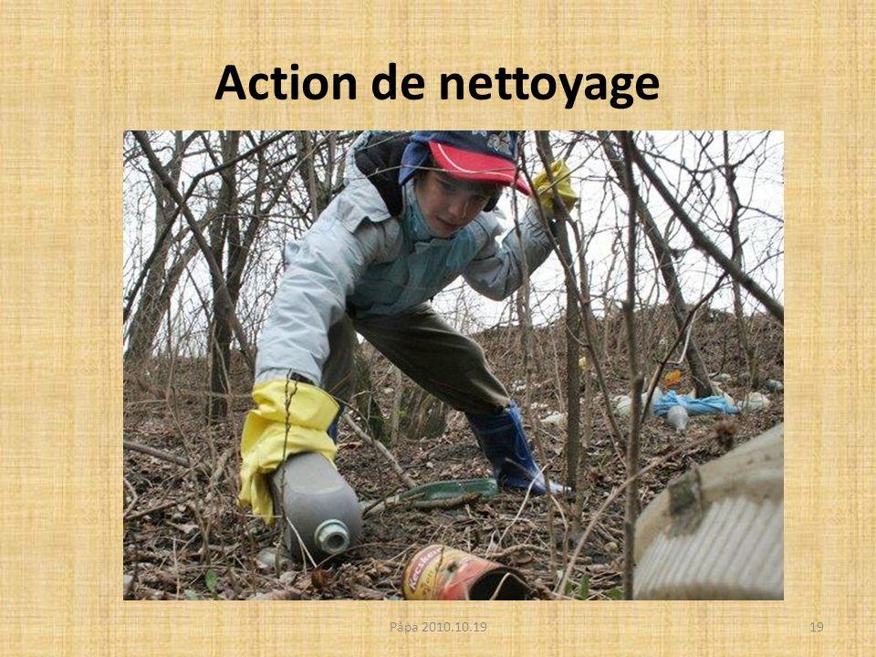 Action de nettoyage Pápa 2010.10.1919