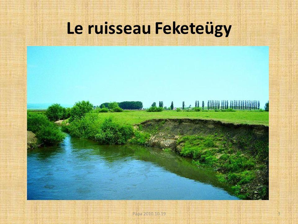 Le ruisseau Feketeügy 3Pápa 2010.10.19