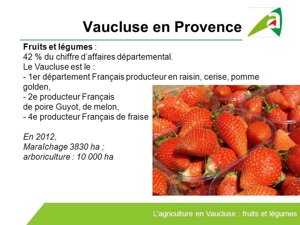 Vaucluse en Provence Lagriculture en Vaucluse : fruits et légumes Fruits et légumes : 42 % du chiffre daffaires départemental. Le Vaucluse est le : -