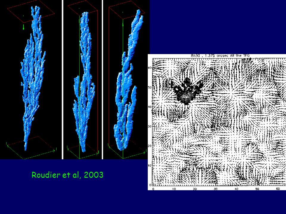 Roudier et al, 2003