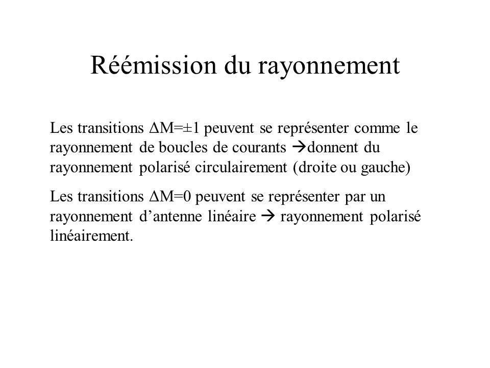 Réémission du rayonnement Les transitions ΔM=±1 peuvent se représenter comme le rayonnement de boucles de courants donnent du rayonnement polarisé cir