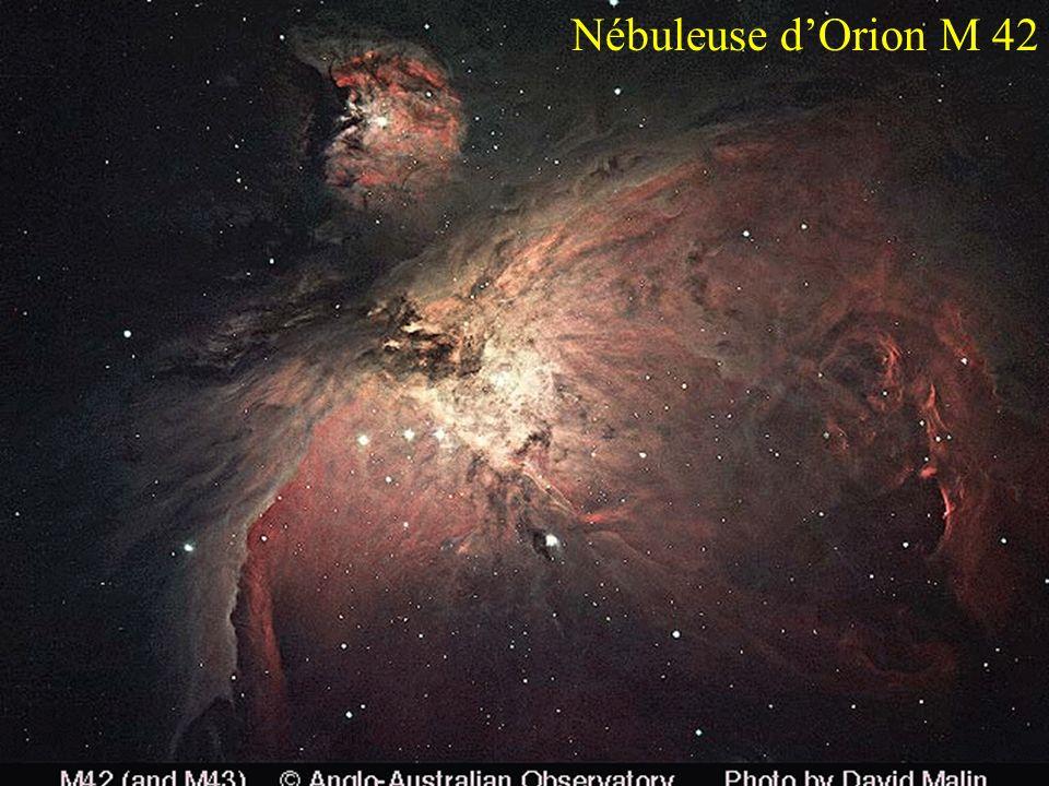 Nébuleuse dOrion M 42