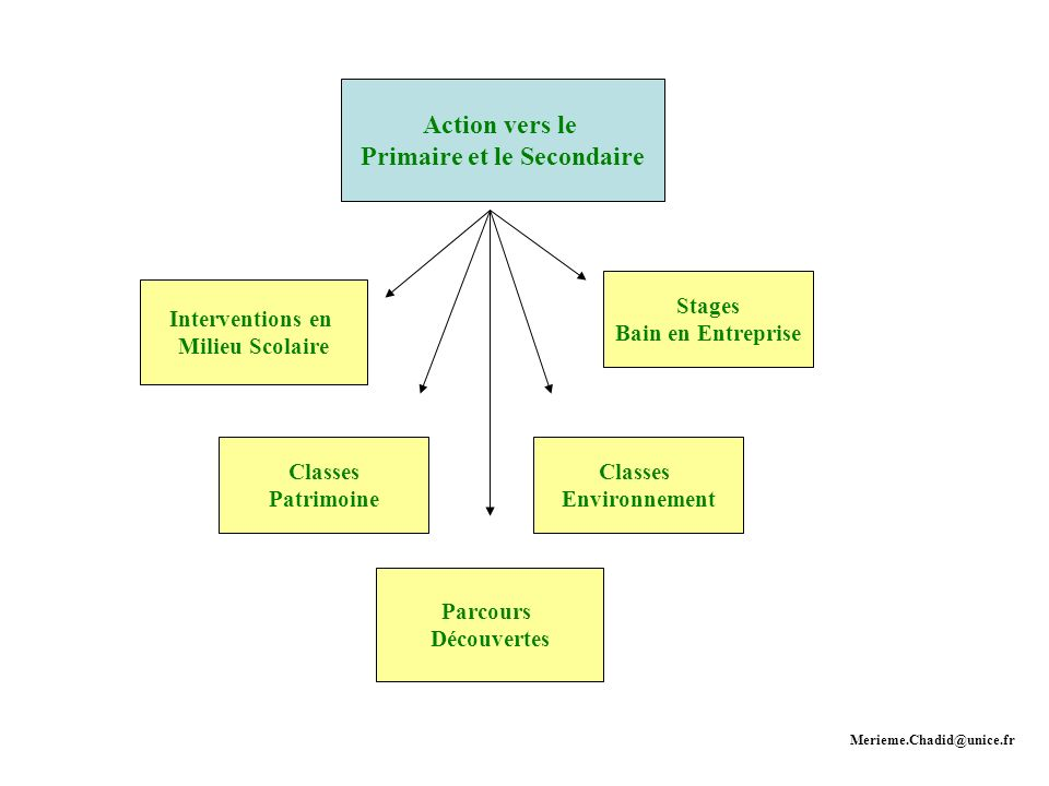 Action vers le Primaire et le Secondaire Interventions en Milieu Scolaire Classes Patrimoine Classes Environnement Stages Bain en Entreprise Parcours