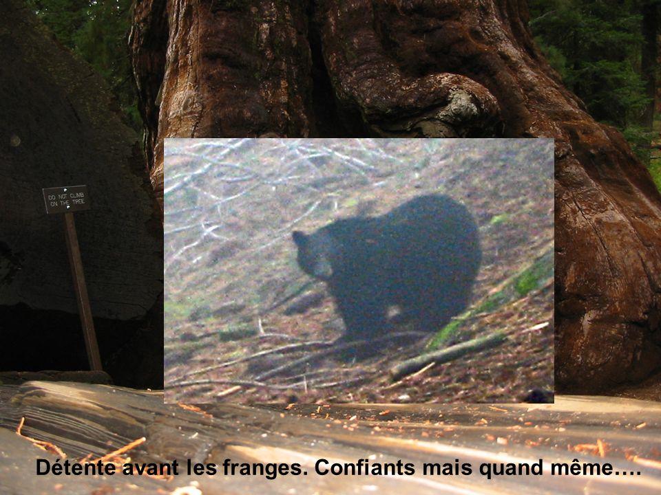 5/6-11-2007VEGA Journées Scientifiques OCA8 Premières observations 29/09/2007 Très grande stabilité des faisceaux CHARA.