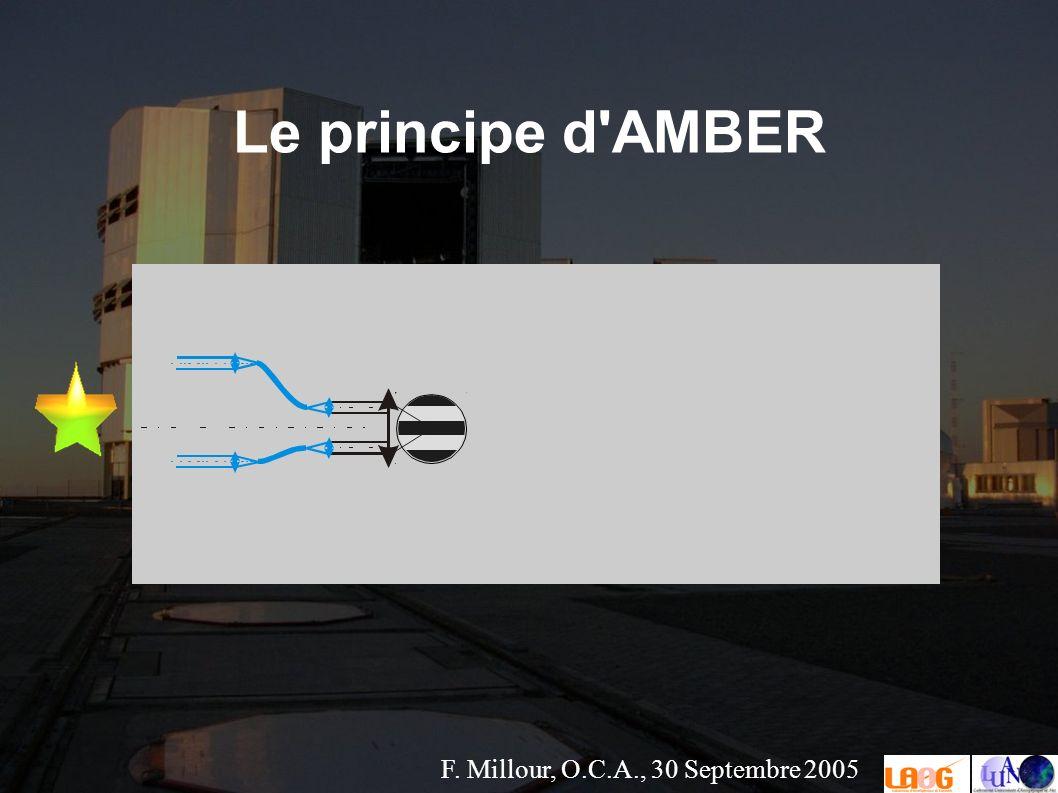 F. Millour, O.C.A., 30 Septembre 2005 Le principe d AMBER