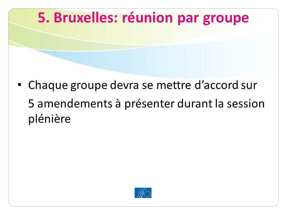5. Bruxelles: réunion par groupe Chaque groupe devra se mettre daccord sur 5 amendements à présenter durant la session plénière