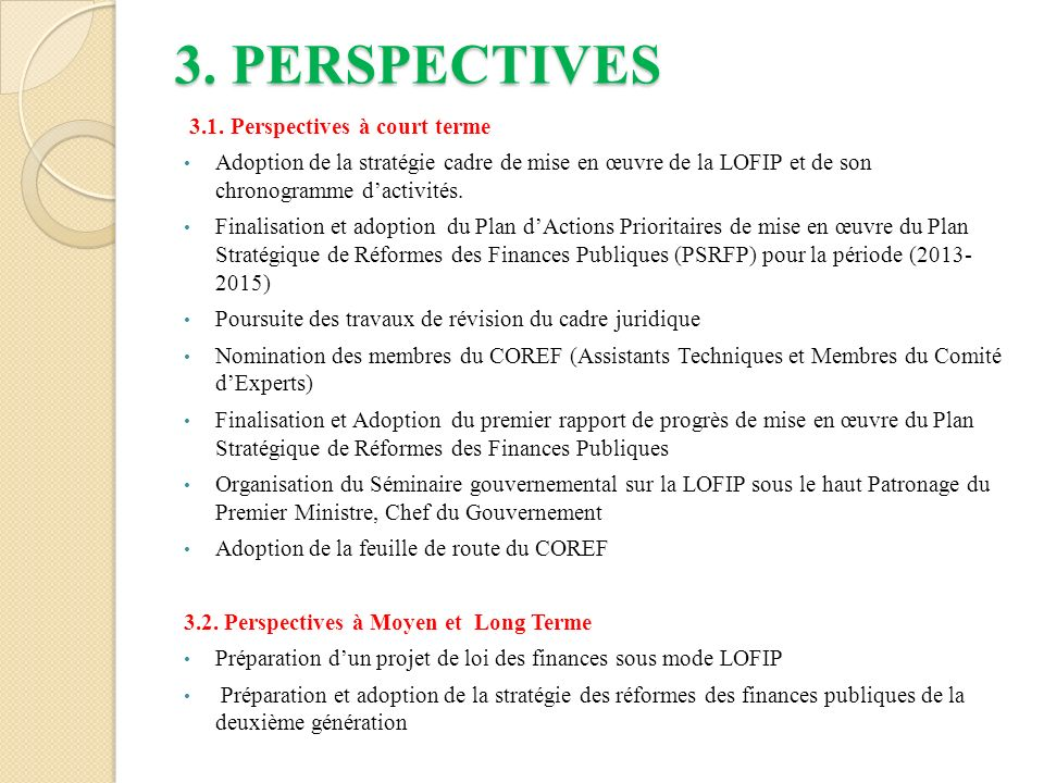 3.PERSPECTIVES 3.1.