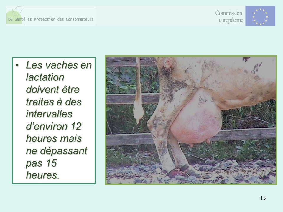 13 Les vaches en lactation doivent être traites à des intervalles denviron 12 heures mais ne dépassant pas 15 heures.Les vaches en lactation doivent être traites à des intervalles denviron 12 heures mais ne dépassant pas 15 heures.