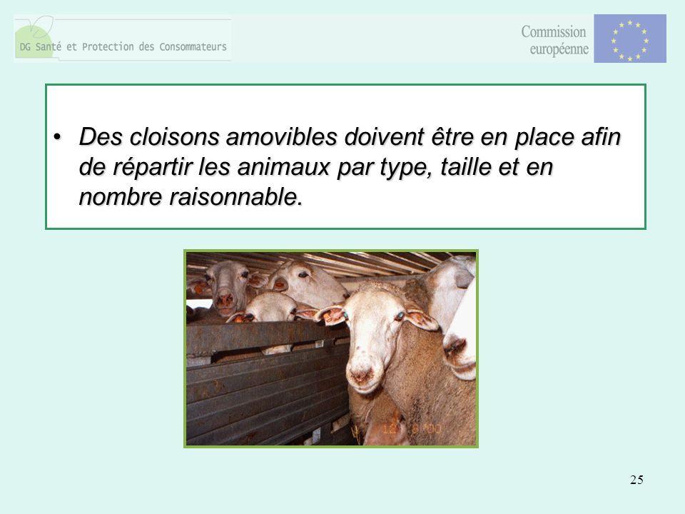 25 Des cloisons amovibles doivent être en place afin de répartir les animaux par type, taille et en nombre raisonnable.Des cloisons amovibles doivent