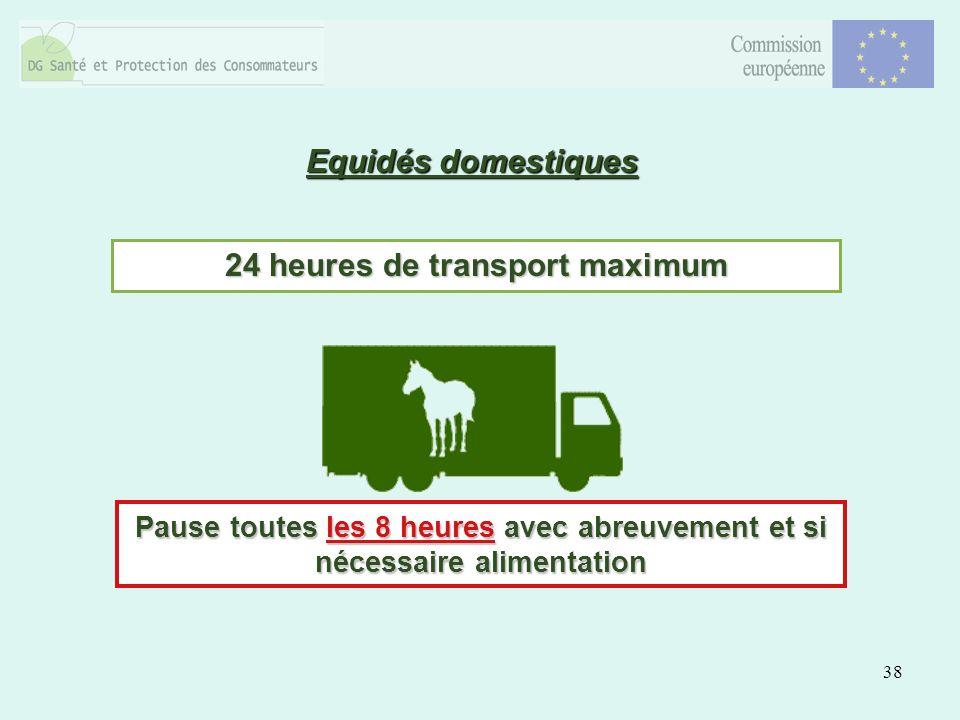 38 Equidés domestiques 24 heures de transport maximum Pause toutes les 8 heures avec abreuvement et si nécessaire alimentation