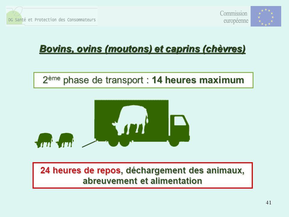 41 2 ème phase de transport : 14 heures maximum 24 heures de repos, déchargement des animaux, abreuvement et alimentation Bovins, ovins (moutons) et caprins (chèvres)
