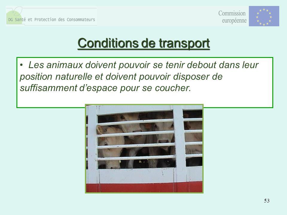 53 Les animaux doivent pouvoir se tenir debout dans leur position naturelle et doivent pouvoir disposer de suffisamment despace pour se coucher.