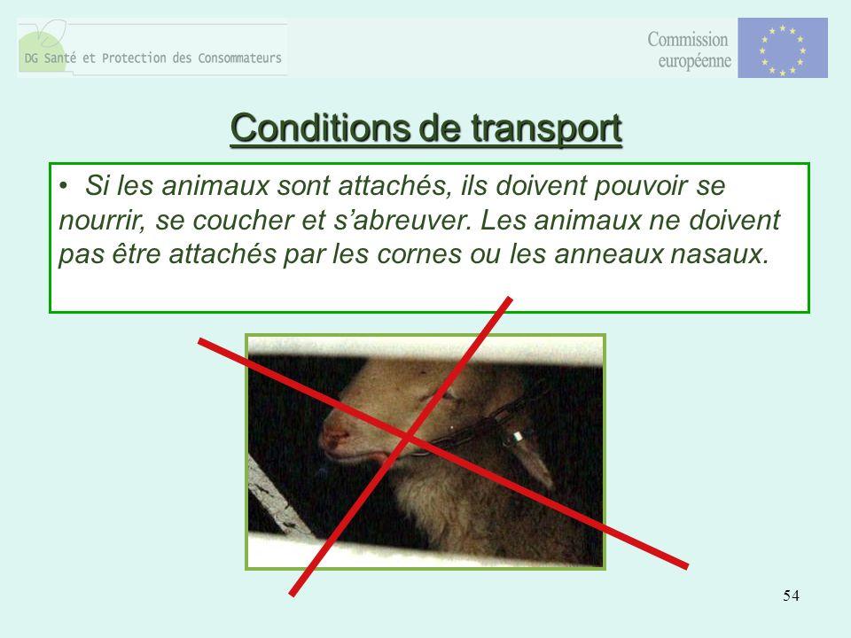 54 Si les animaux sont attachés, ils doivent pouvoir se nourrir, se coucher et sabreuver.