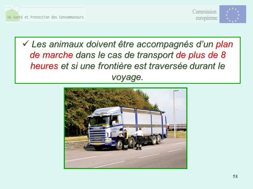58 Les animaux doivent être accompagnés dun plan de marche dans le cas de transport de plus de 8 heures et si une frontière est traversée durant le voyage.