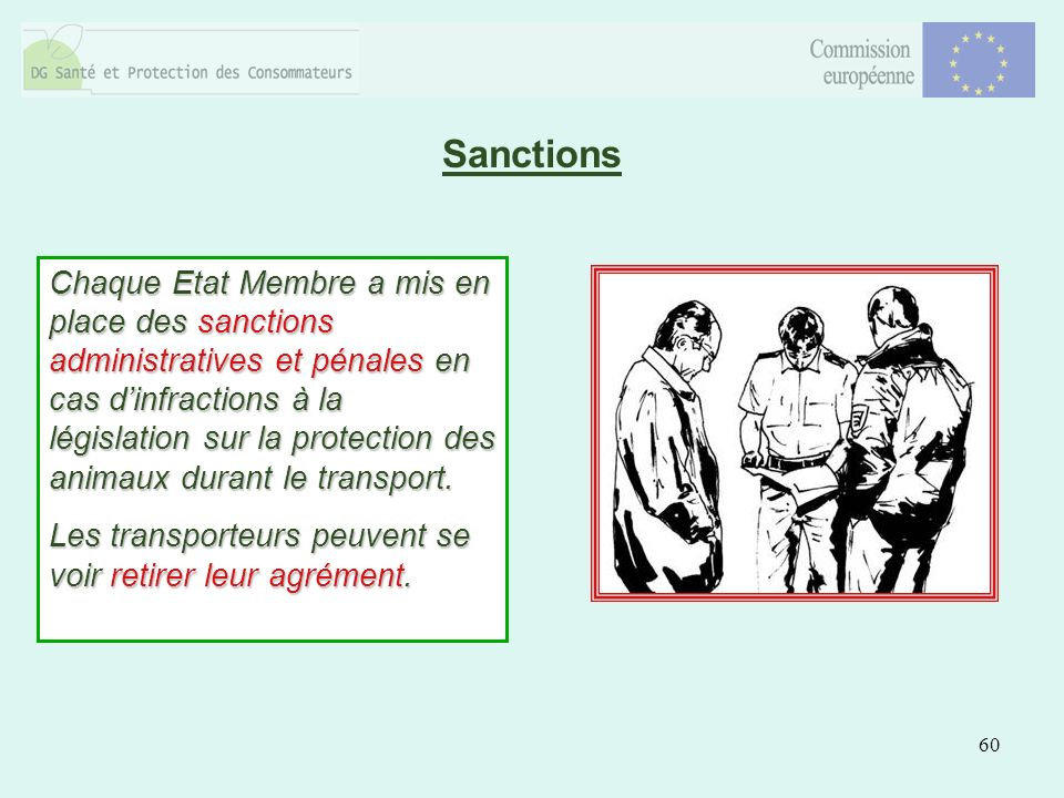 60 Sanctions Chaque Etat Membre a mis en place des sanctions administratives et pénales en cas dinfractions à la législation sur la protection des animaux durant le transport.