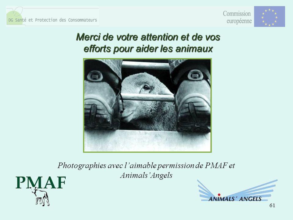 61 Merci de votre attention et de vos efforts pour aider les animaux Photographies avec laimable permission de PMAF et AnimalsAngels