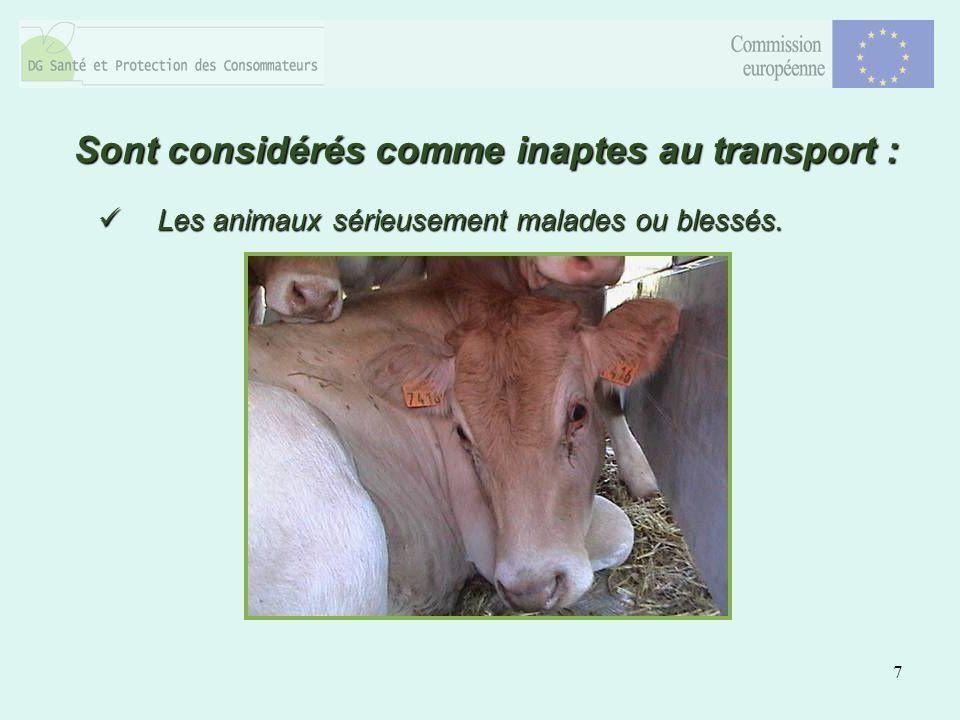 7 Les animaux sérieusement malades ou blessés. Les animaux sérieusement malades ou blessés. Sont considérés comme inaptes au transport :