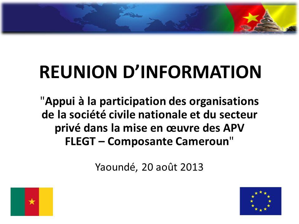 REUNION DINFORMATION Appui à la participation des organisations de la société civile nationale et du secteur privé dans la mise en œuvre des APV FLEGT – Composante Cameroun Yaoundé, 20 août 2013