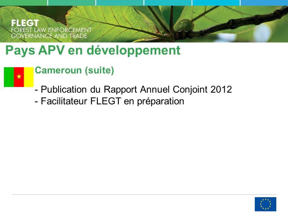 Pays APV en développement Cameroun (suite) - Publication du Rapport Annuel Conjoint 2012 - Facilitateur FLEGT en préparation