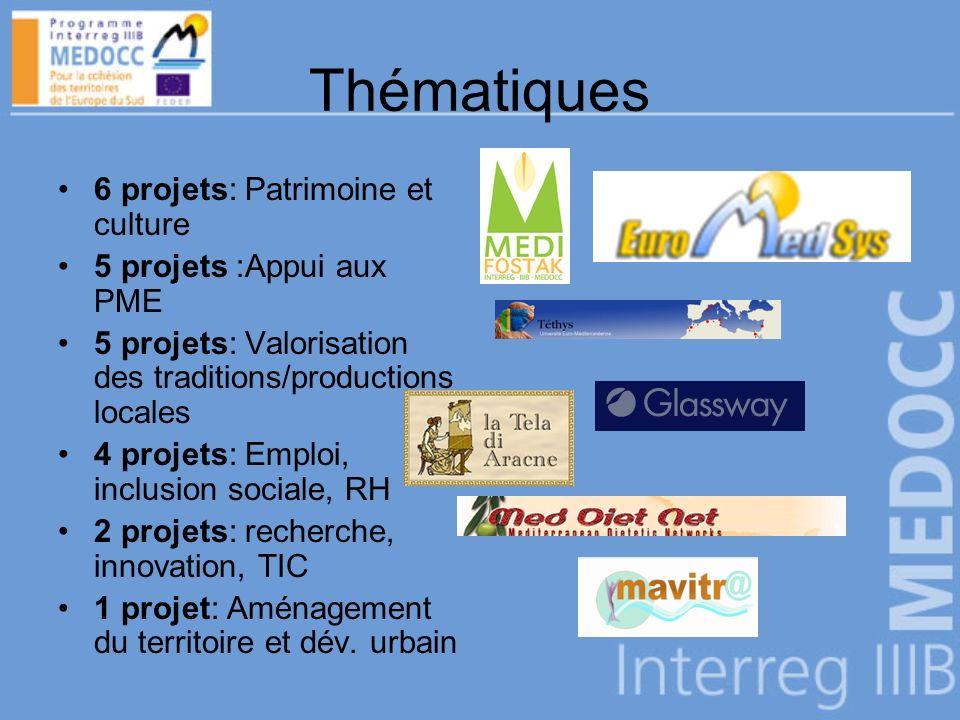 Thématiques 6 projets: Patrimoine et culture 5 projets :Appui aux PME 5 projets: Valorisation des traditions/productions locales 4 projets: Emploi, inclusion sociale, RH 2 projets: recherche, innovation, TIC 1 projet: Aménagement du territoire et dév.