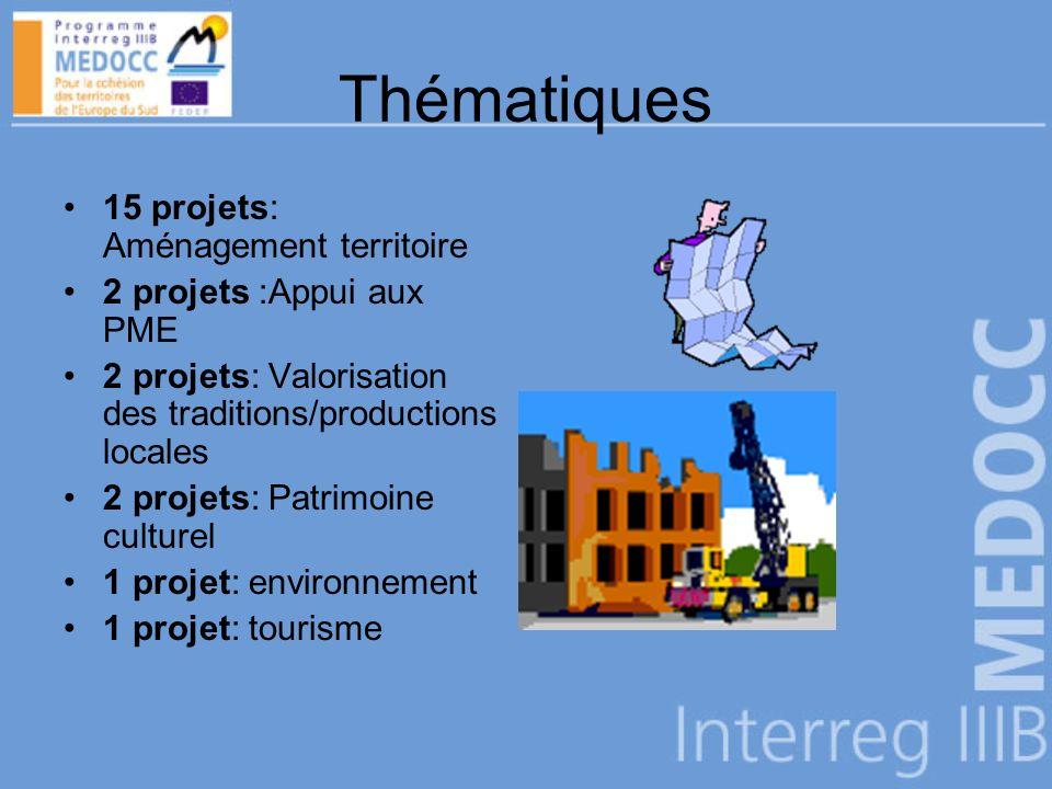 Thématiques 15 projets: Aménagement territoire 2 projets :Appui aux PME 2 projets: Valorisation des traditions/productions locales 2 projets: Patrimoine culturel 1 projet: environnement 1 projet: tourisme