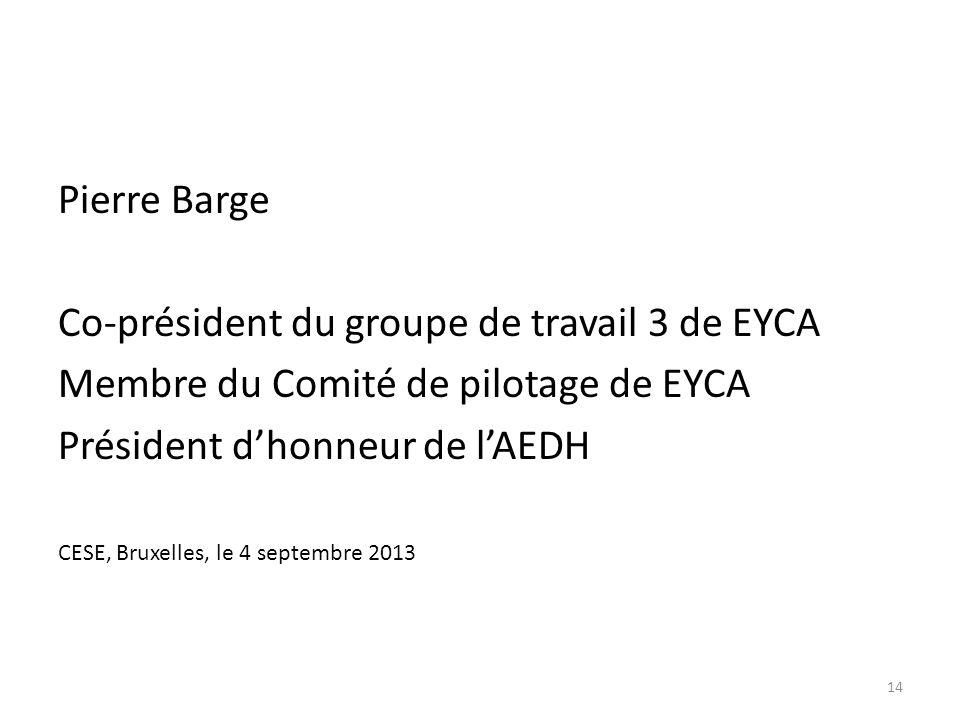 Pierre Barge Co-président du groupe de travail 3 de EYCA Membre du Comité de pilotage de EYCA Président dhonneur de lAEDH CESE, Bruxelles, le 4 septembre 2013 14