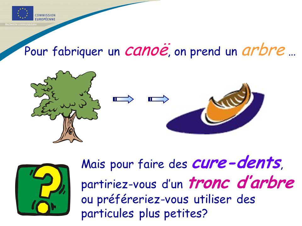 Pour fabriquer un canoë, on prend un arbre … Mais pour faire des cure-dents, partiriez-vous dun tronc darbre ou préféreriez-vous utiliser des particul