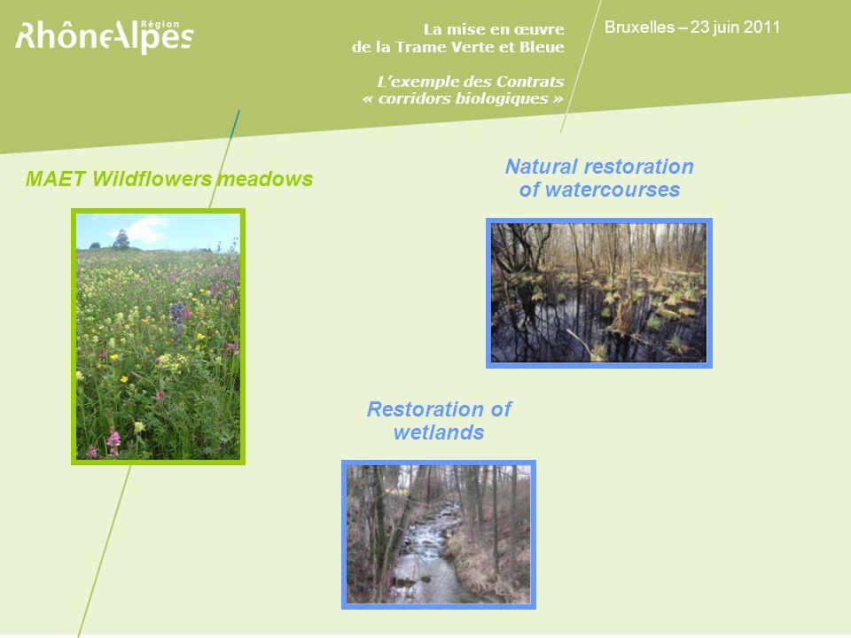 La mise en œuvre de la Trame Verte et Bleue Lexemple des Contrats « corridors biologiques » Bruxelles – 23 juin 2011 Natural restoration of watercourses MAET Wildflowers meadows Restoration of wetlands