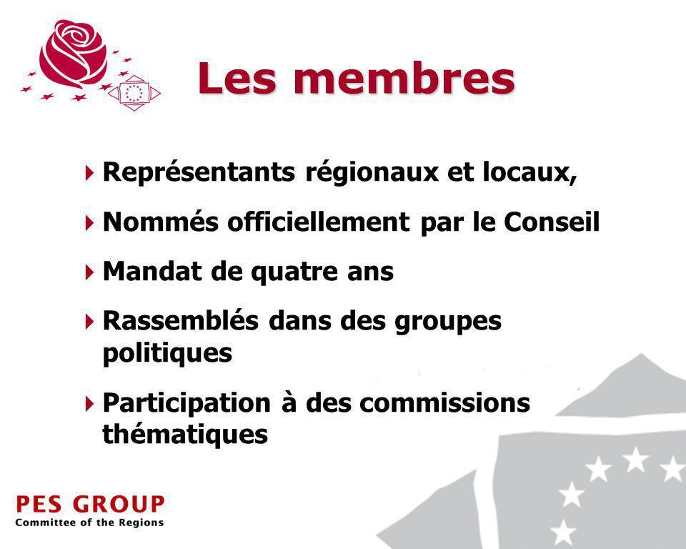 7 Les membres Représentants régionaux et locaux, Nommés officiellement par le Conseil Mandat de quatre ans Rassemblés dans des groupes politiques Participation à des commissions thématiques