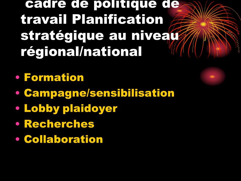 cadre de politique de travail Planification stratégique au niveau régional/national Formation Campagne/sensibilisation Lobby plaidoyer Recherches Coll