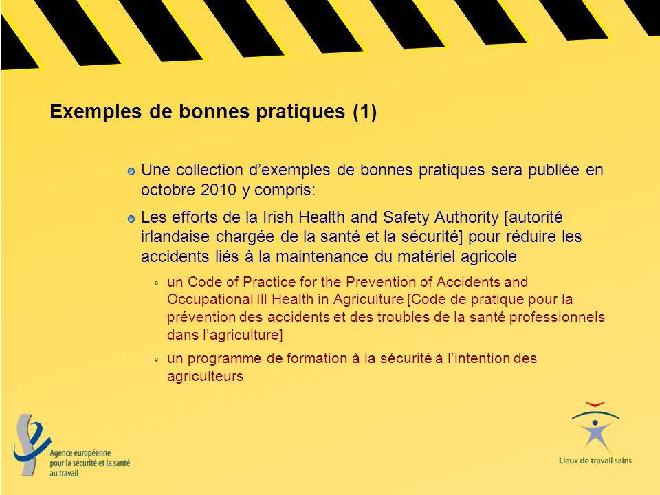 Exemples de bonnes pratiques (1) Une collection dexemples de bonnes pratiques sera publiée en octobre 2010 y compris: Les efforts de la Irish Health a