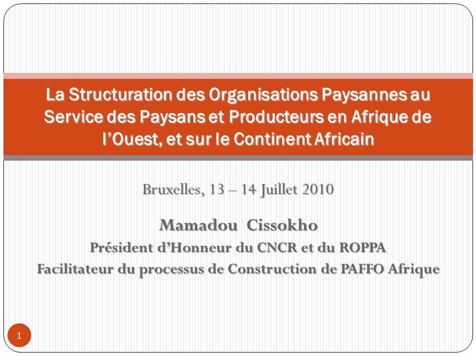 Bruxelles, 13 – 14 Juillet 2010 Mamadou Cissokho Président dHonneur du CNCR et du ROPPA Facilitateur du processus de Construction de PAFFO Afrique La