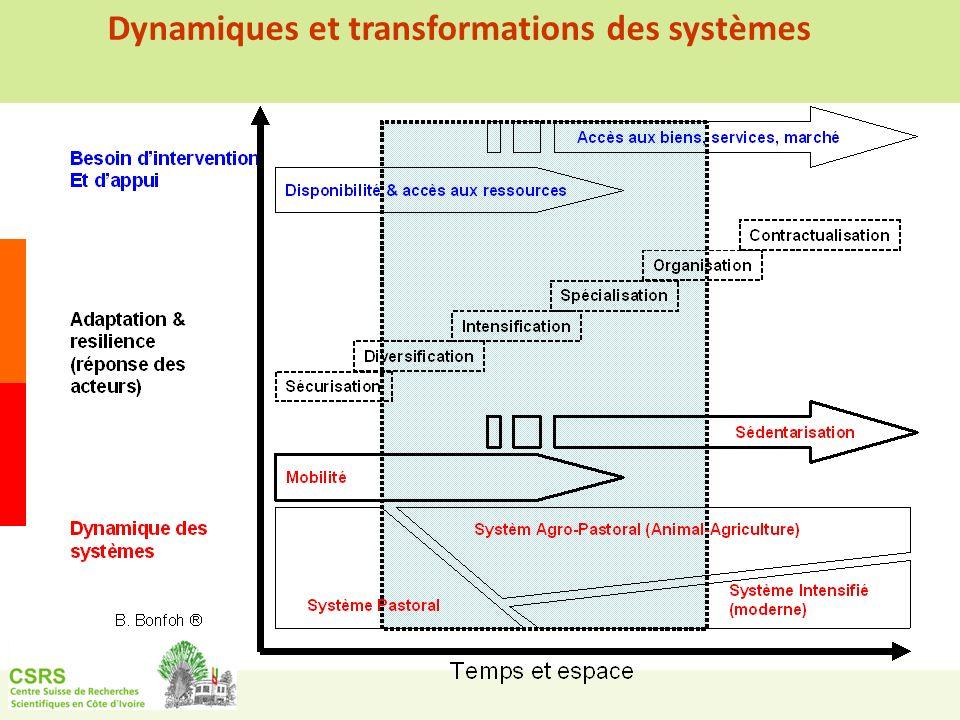 Dynamiques et transformations des systèmes