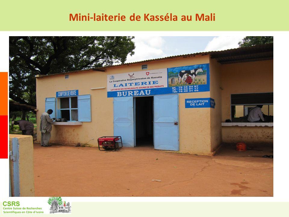 Mini-laiterie de Kasséla au Mali