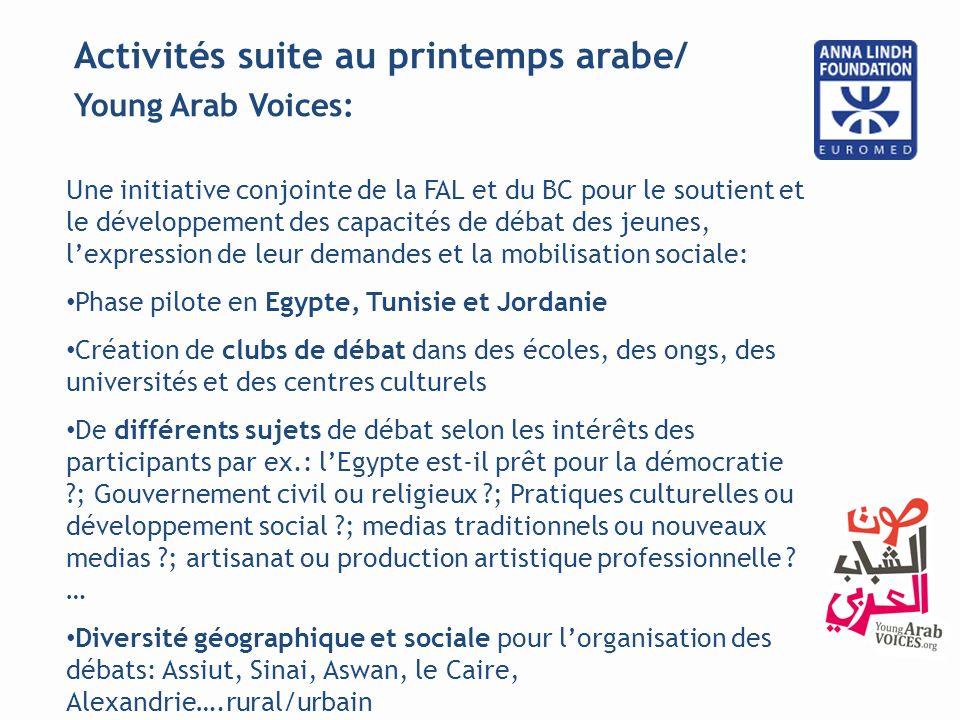 Activités suite au printemps arabe/ Art for Change: Pour encourager des organisations locales à réaliser des projets en utilisant lart comme instrument pour le changement social et le développement.