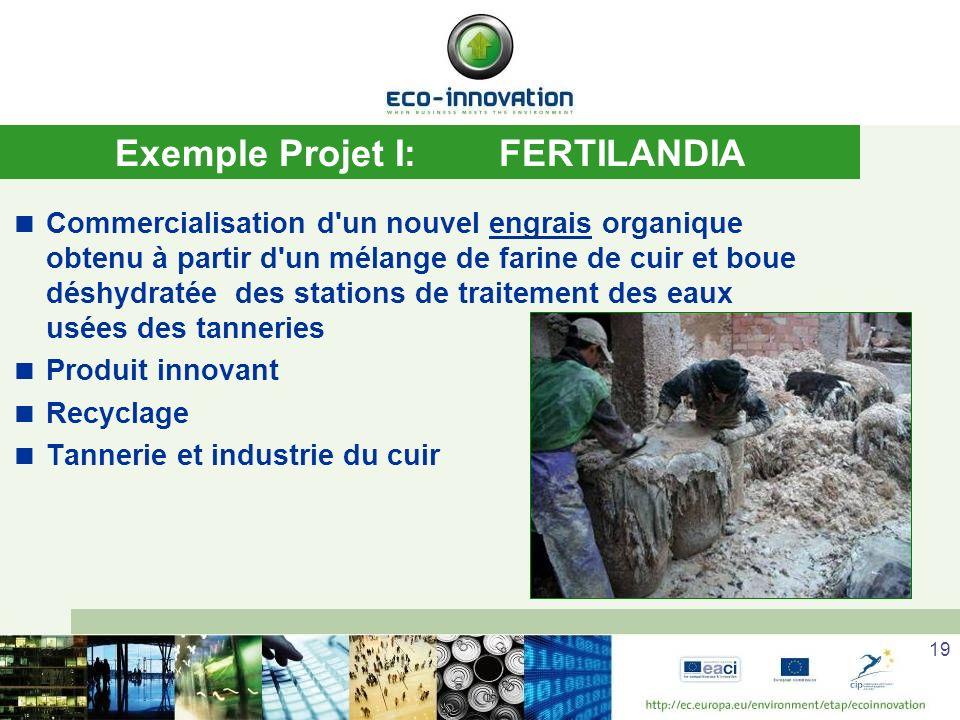 19 Exemple Projet I:FERTILANDIA Commercialisation d un nouvel engrais organique obtenu à partir d un mélange de farine de cuir et boue déshydratée des stations de traitement des eaux usées des tanneries Produit innovant Recyclage Tannerie et industrie du cuir