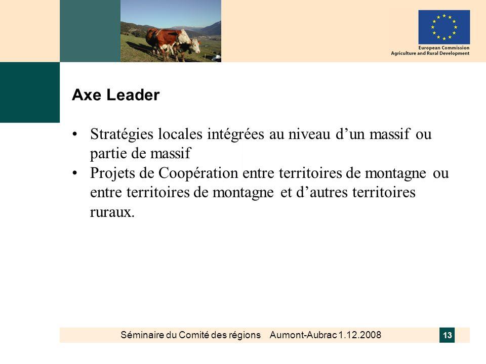 Séminaire du Comité des régions Aumont-Aubrac 1.12.2008 13 Axe Leader Stratégies locales intégrées au niveau dun massif ou partie de massif Projets de