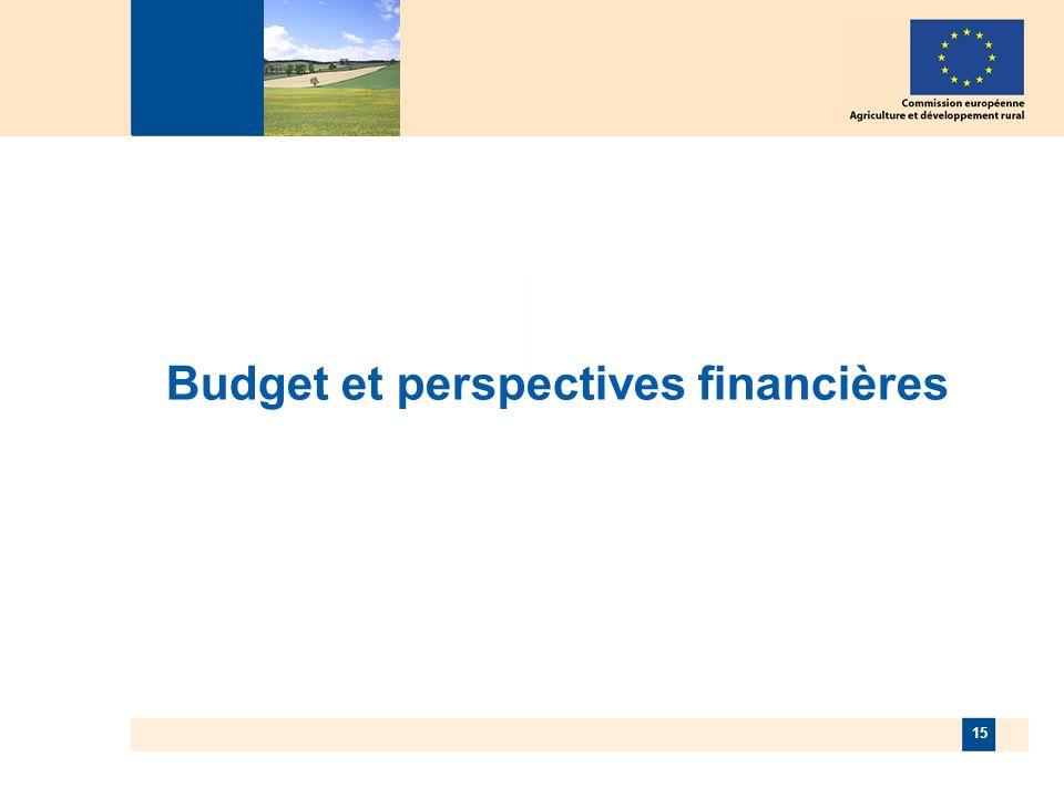 15 Budget et perspectives financières
