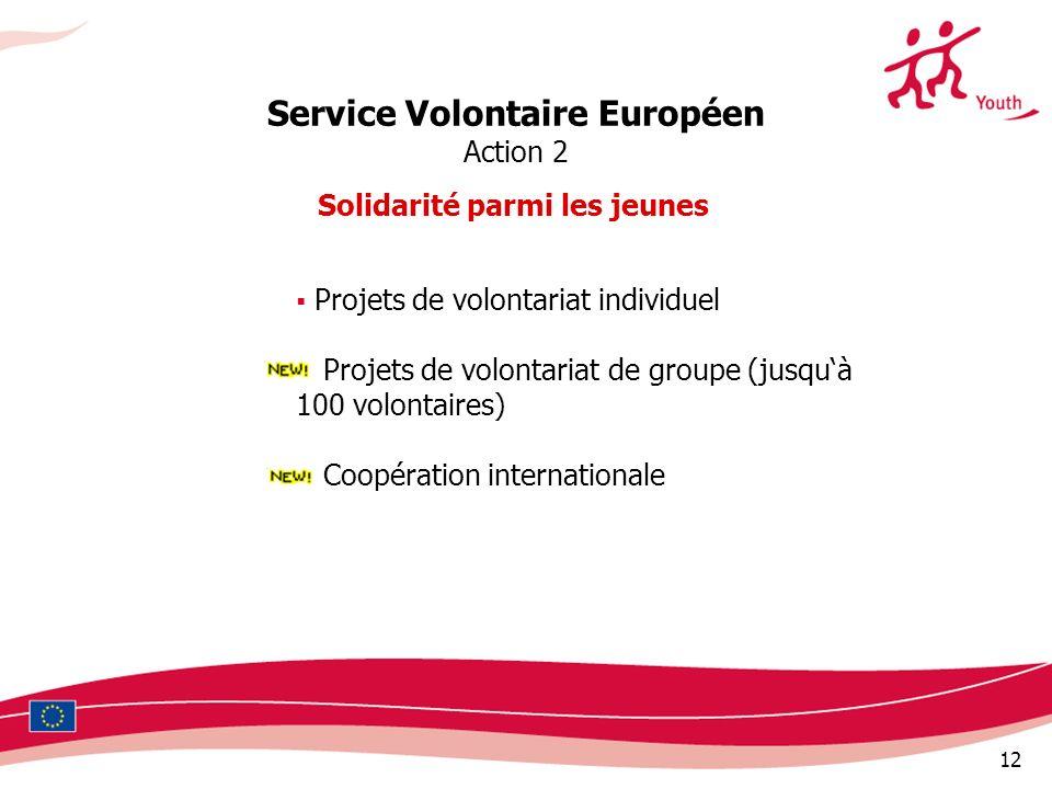 12 Service Volontaire Européen Action 2 Solidarité parmi les jeunes Projets de volontariat individuel Projets de volontariat de groupe (jusquà 100 volontaires) Coopération internationale