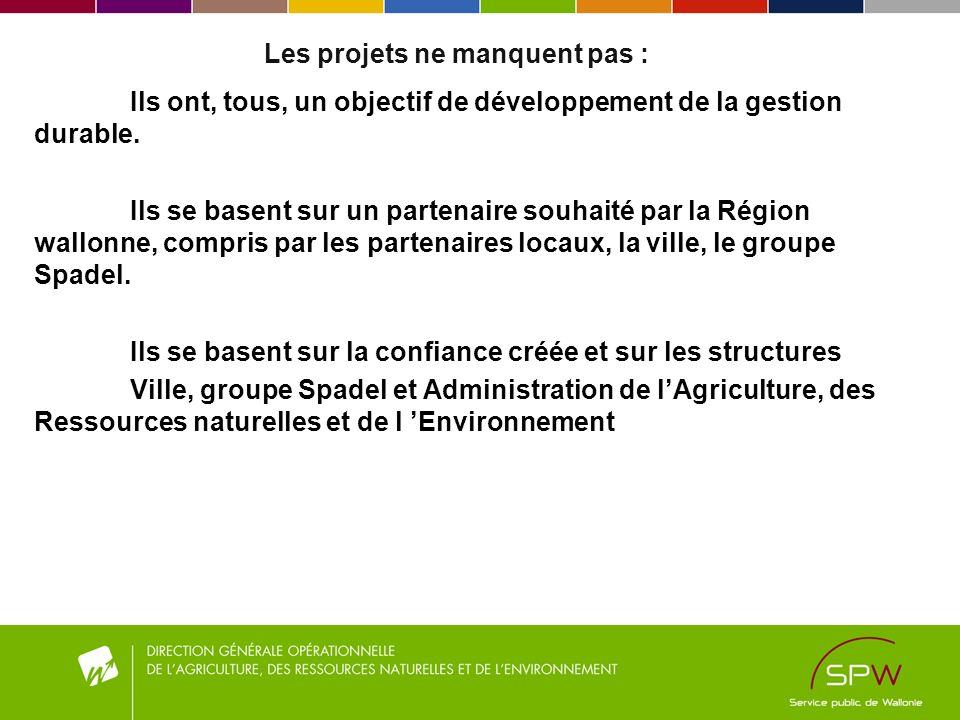 Les projets ne manquent pas : Ils ont, tous, un objectif de développement de la gestion durable. Ils se basent sur un partenaire souhaité par la Régio