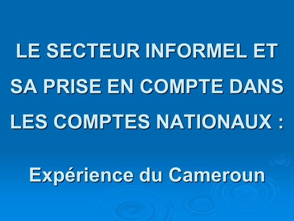 Taux de chômage selon le genre et l âge Yaoundé 1993 Yaoundé 2005 Cameroun 2005 Genre Hommes 24,911,44,2 Femmes 24,219,24,6 Age 10-29 ans 34,921,16,5 30-49 ans 16,19,63,1 50 ans et plus 11,05,01,2 Ensemble 24,614,74,4