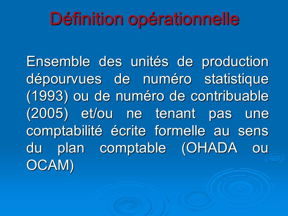 Définition opérationnelle Ensemble des unités de production dépourvues de numéro statistique (1993) ou de numéro de contribuable (2005) et/ou ne tenan