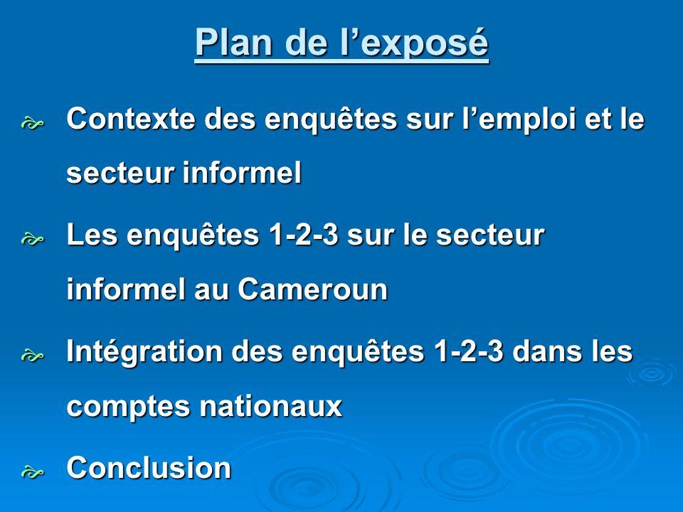 Plan de lexposé Contexte des enquêtes sur lemploi et le secteur informel Contexte des enquêtes sur lemploi et le secteur informel Les enquêtes 1-2-3 s