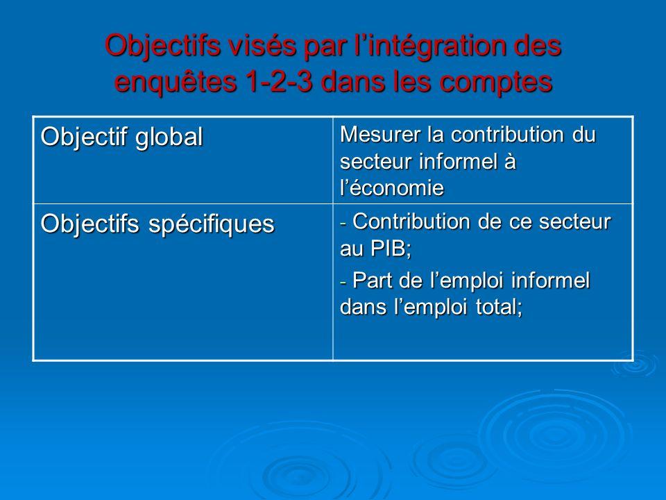 Objectifs visés par lintégration des enquêtes 1-2-3 dans les comptes Objectif global Mesurer la contribution du secteur informel à léconomie Objectifs