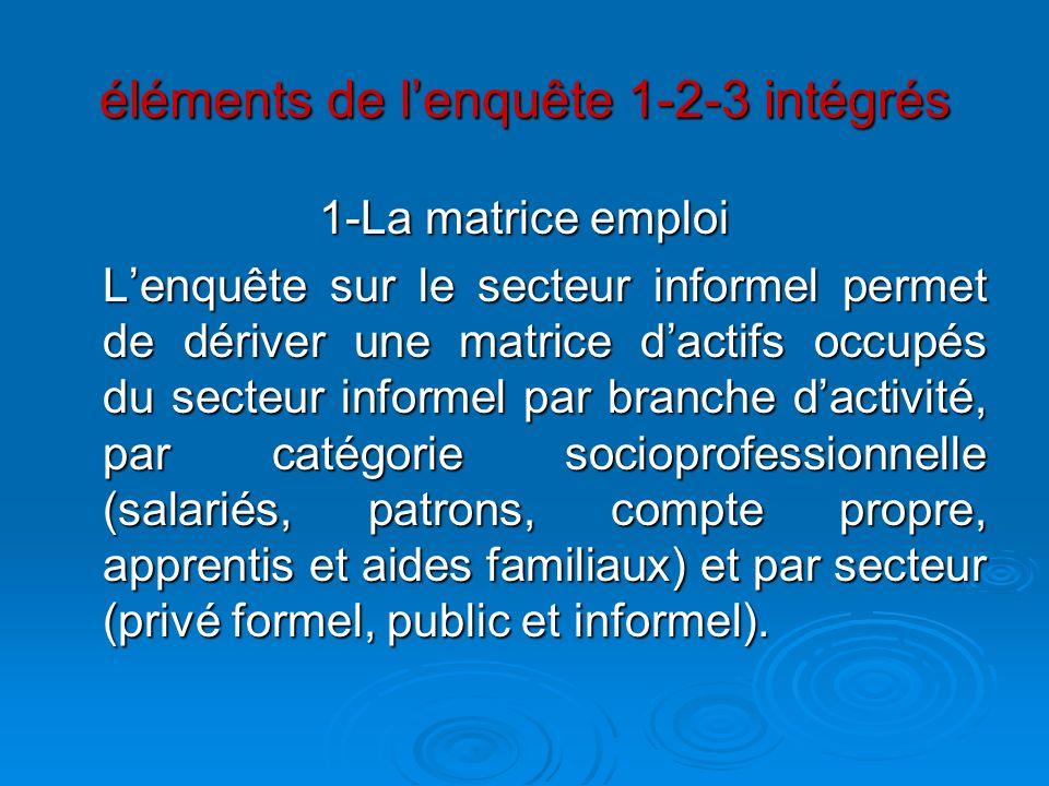 éléments de lenquête 1-2-3 intégrés 1-La matrice emploi Lenquête sur le secteur informel permet de dériver une matrice dactifs occupés du secteur info