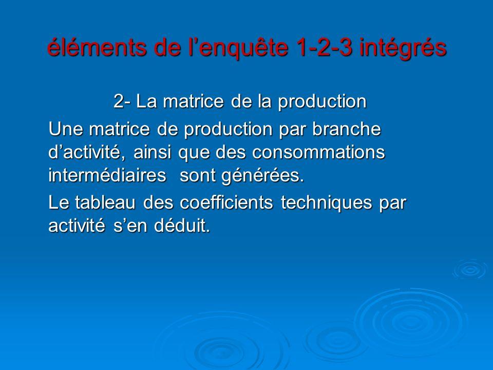 éléments de lenquête 1-2-3 intégrés 2- La matrice de la production Une matrice de production par branche dactivité, ainsi que des consommations interm